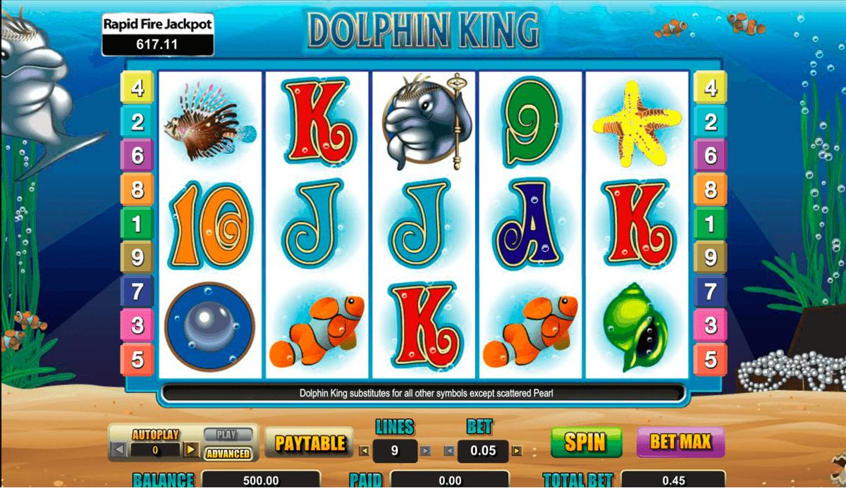 dolphin king amaya